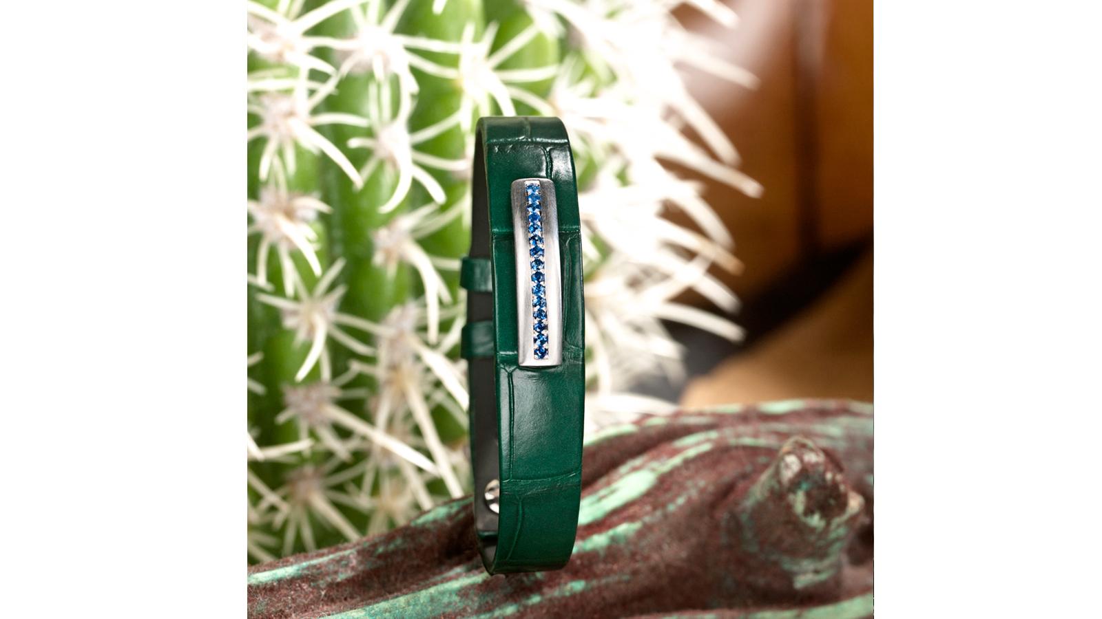 slide-cactusbleu